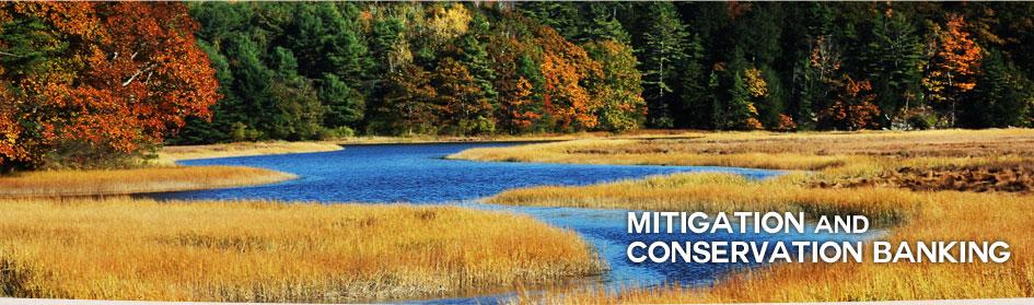 mitigation-conservation-banking